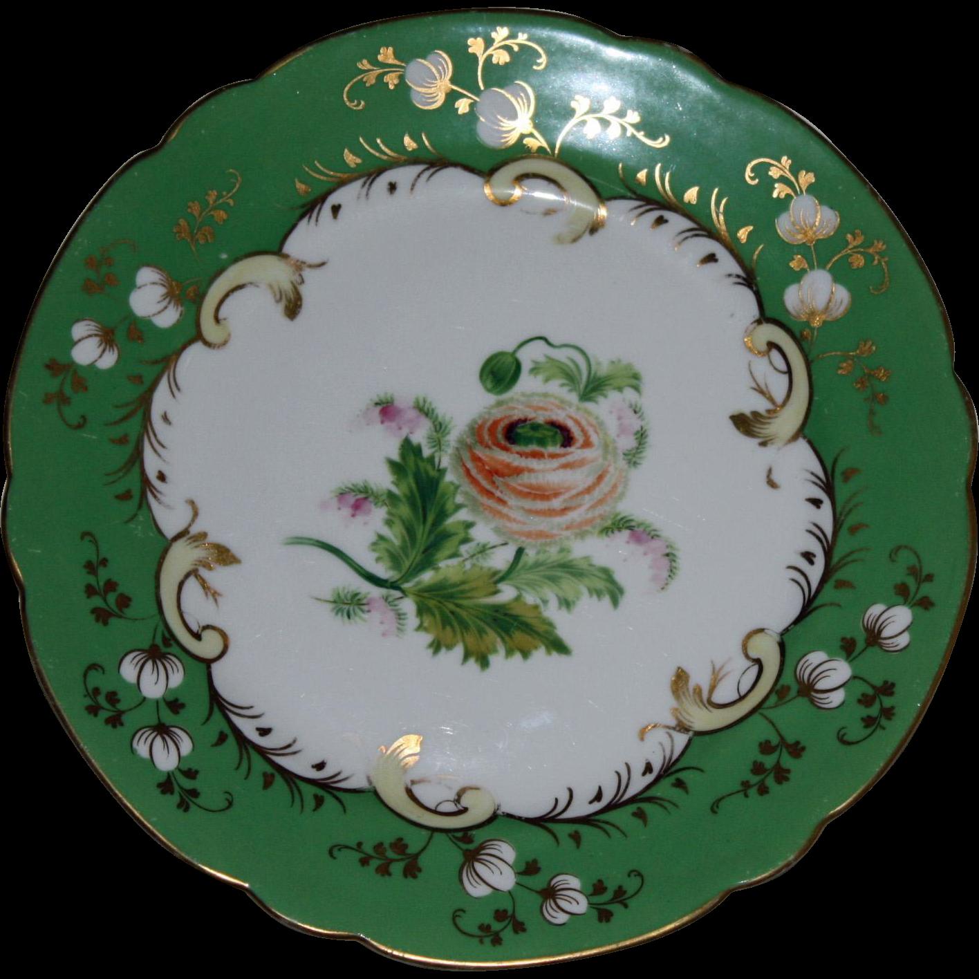Set of Four Antique Hand Painted English Botanical Cabinet Plates