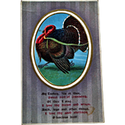 Thanksgiving Postcard with Humorous Poem about Turkey