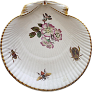 Antique Wedgwood Plate Decorated with Insects