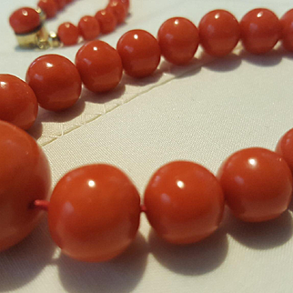 Gorgeous 12K Salmon Red Coral 5.75-17.5mm Bead Necklace - 63.8 grams