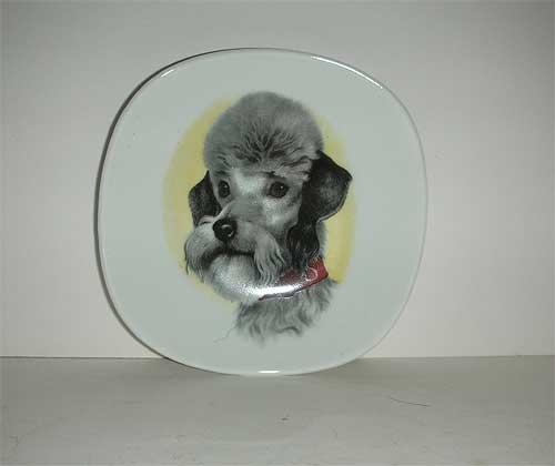 Germany Bavaria China Poodle plate