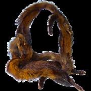 Vintage 1940's Fox Fur Stole