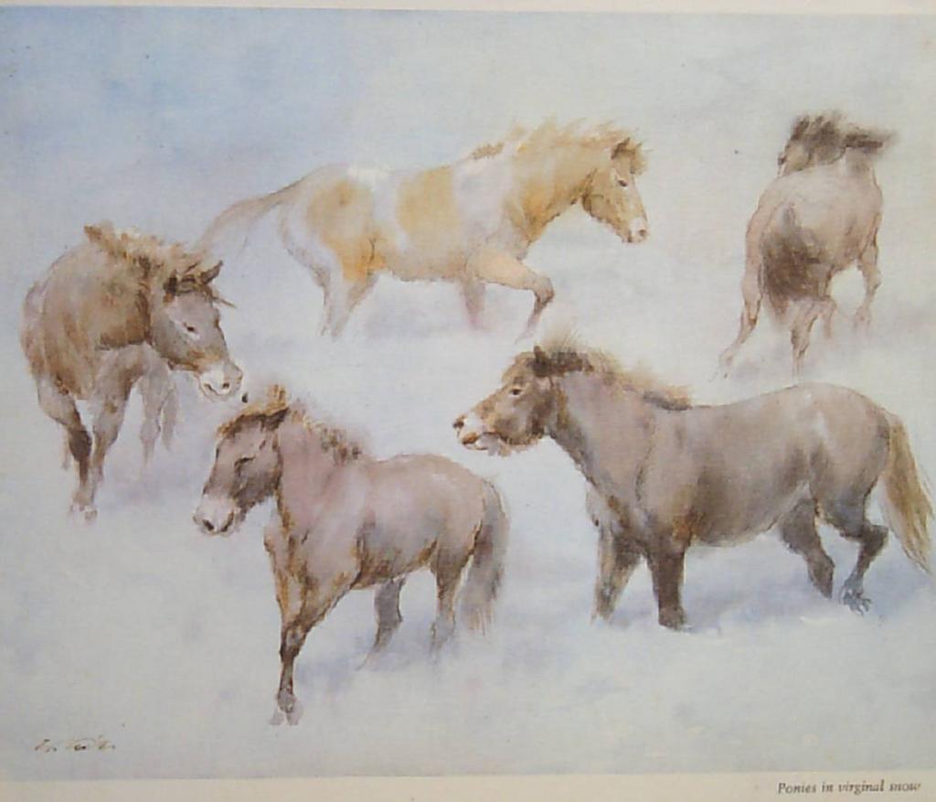 """Horse Vintage Watercolor Wolfgang Tritt  """"Ponies in Virginal Snow"""""""