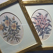 Watercolor by Paul J. Long Floral Lithographs Framed