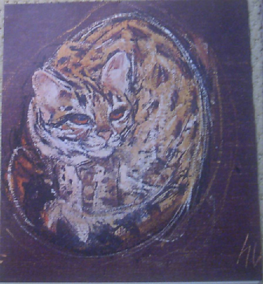 Cat LIthograph by HUG Swiss Artist 1960