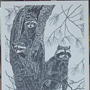 Wildlife Birds-Black and White Ink Art-Raccoons-Bobcats-Drawing Inks
