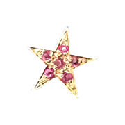Star tie tac with red stones in gold tone setting