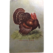 1907 Thanksgiving Greetings