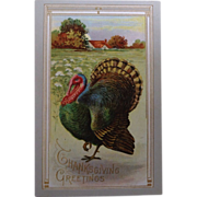 Unused post card Thanksgiving Greetings with turkey and farm scene