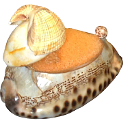Sweet vintage sea shell pin cushion