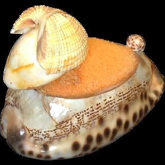 Sweet vintage sea shell pin cushion