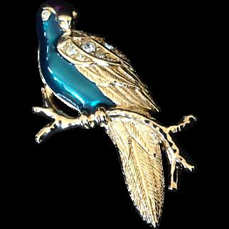 Avon Enamel and Rhinestone Tropical Bird or Parrot Pin. Book Piece