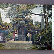 1907 Undivided Back Post Card  George Washington's Tomb at Mt. Vernon