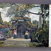 1907 Undivided Back Post Card  George Washington's Tomb at Mt. Vernon