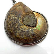 Vintage Ammonite Fossil Sterling Silver Necklace Pendant