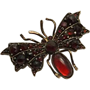 Antique Rose Cut Bohemian Garnet Butterfly Bug Insect Pin