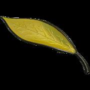 Vintage Norway David Andersen Large Yellow Leaf Sterling Silver Brooch Pin
