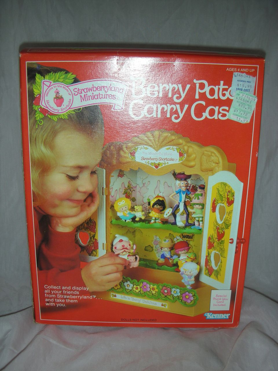 Vintage Kenner Strawberry Shortcake Doll Berry Patch Case NRFB