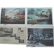 3 Ken Zylla Art Prints Commemorative North American Game Bird Series