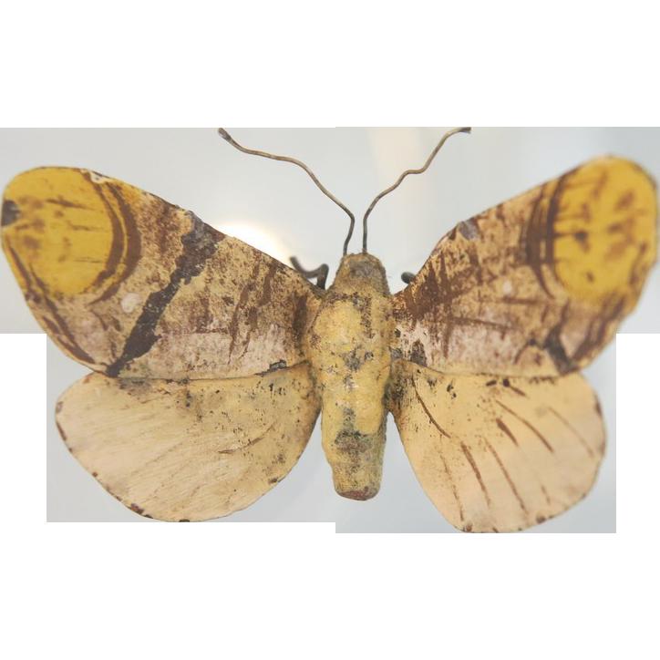 Antique  yellow Vienna Bronze butterfly, turn of 20th century