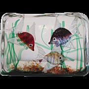Cenedese glass block aquarium attributed to Riccardo Licata, ca. 1950