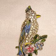 Vintage Coro Enamel & Rhinestone Parrot Fur Clip 1940s