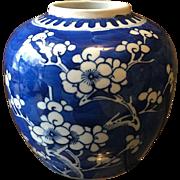Early 1900's Chinese Dogwood Blue and White Porcelain Vase