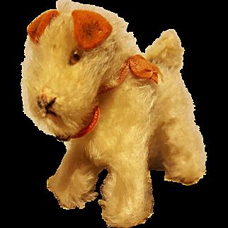 Darling Steiff Terrier