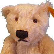 "Sweet Steiff Bear, Looking for new Home!  10"" Tall"