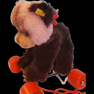 Adorable!  Steiff Bear on Wheels!