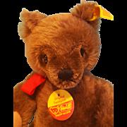 """Vintage Mohair Steiff Bear, 10"""", Chocolate Brown"""