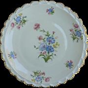 Beautiful Bavarian Flowers Hand Painted Plate