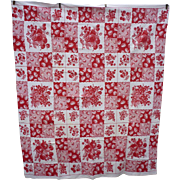 Red and White Fancy Fruits Checkerboard Picnic Squares Vintage Print Tablecloth