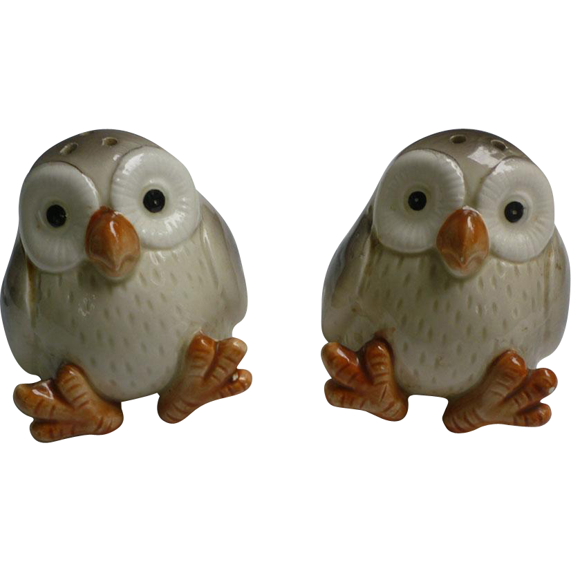 Cute Owl Salt And Pepper Shakers Set Fitz And Floyd 1978