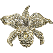 Pot Metal Trembler Clear Rhinestone Orchid Flower Pin Brooch