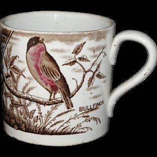 Early Staffordshire Childs Transferware ABC Nursery Mug BIRD BULLFINCH c1880