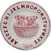 Childs Alphabet Abc Plate PUPPIES In A Basket Blood Relations Staffordshire England c1850