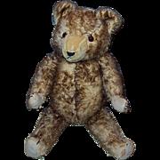 """1920-30's Tipped Mohair Teddy Bear 24"""""""
