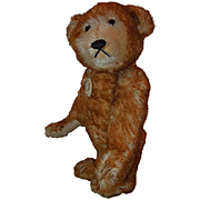 "Steiff Petsy Teddy Bear 13"""