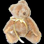 """Vintage 10"""" Steiff Teddy Bear"""