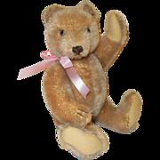"""Vintage 13"""" Steiff Teddy Bear"""