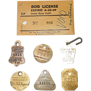 Group of 7 Vintage Dog License Tags