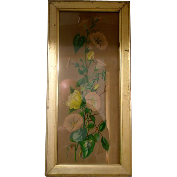 Circa 1890 Water Color of Morning Glories