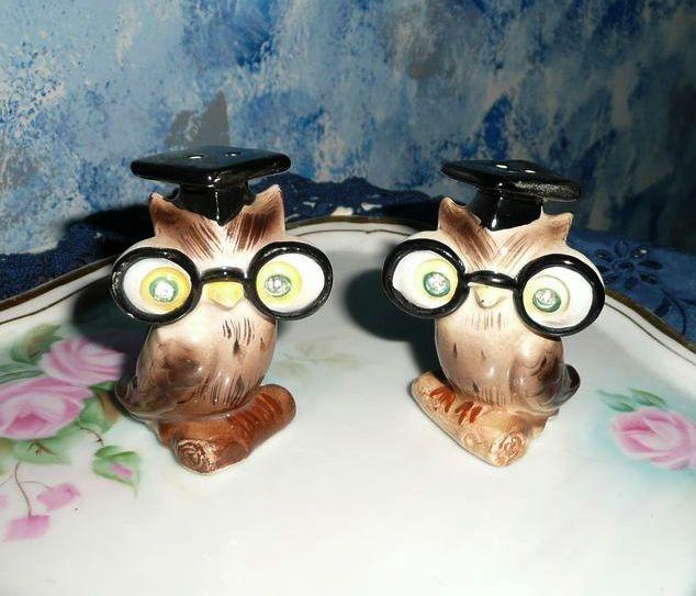 Set of Smart Owls Salt and Pepper Shakers