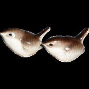 Pair of Lomonosov Brown/White Birds