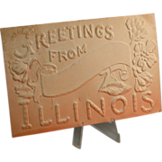 Heavily Embossed Ombre Color Illinois Postcard c. 1909