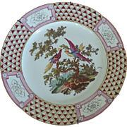 Antique 18th century Derby Porcelain Ornithological Cabinet Plate Decorated with Exotic Birds in the French Taste