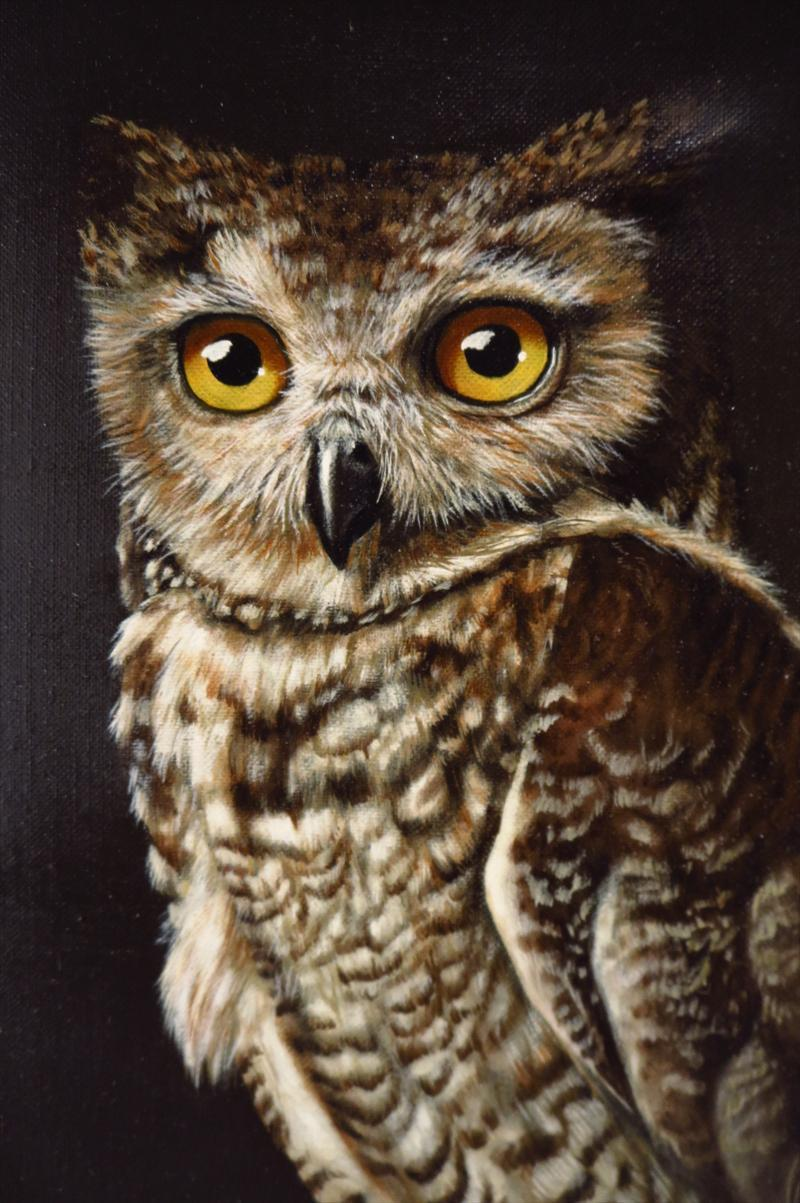 Oil Painting Portrait Of A Great Horned Owl By Photo