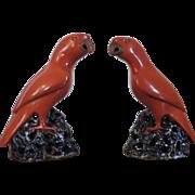 Pair Antique 19th century Chinese Porcelain Parrots with Bright Orange Glaze