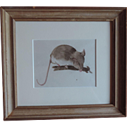 Pre War Pencil Watercolor Painting of a Mouse by Stephen Voorhies Study for Children's Book